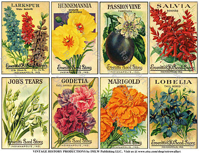 Antique Seed Packet Reproductions, 2 Sticker Sheets, Flower Seed Pack, Garden