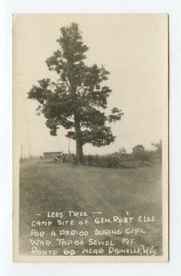 RAINELLE, WV ~ Lee's Tree ~ vintage RPPC postcard ~ Civil War interest