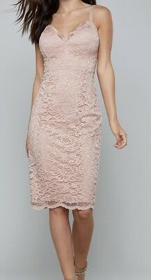 Bebe New With Tags Misty Rose Lace Corset Midi Dress  Size Medium