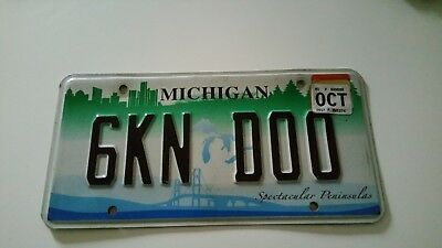 plaque d'immatriculation Michigan 6KN DOO Us Usa license plate