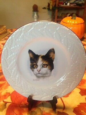 "Vintage  ""cat Plate"" Bone China, Coalport, Made In England, Est. 1750"