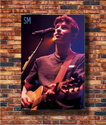 SHAWN MENDES POSTER Live in Concert RARE HOT NEW 22x34