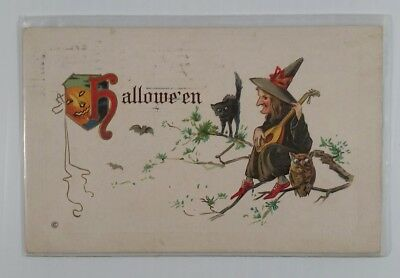 1914 Halloween embossed postcard Witch playing guitar  black cat pumpkin owl