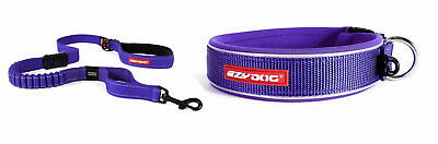 Ezy-Dog Purple Collar & Zero Shock Lead 48""