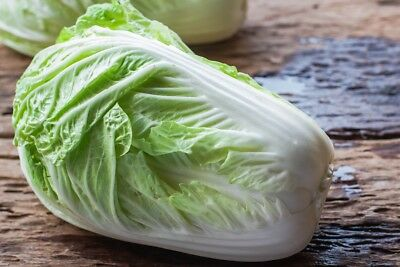 """Napa cabbage """"Forco F1"""" - early variety for all-year - 215 seeds"""