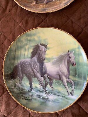 British Horse Society Collector Plate Signed And Numbered River Run