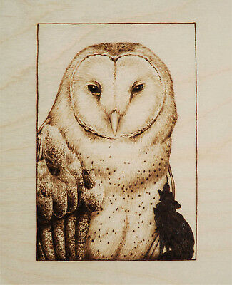 Barn Owl And Wolf Original Animal/bird Art Pyrography/woodburning Drawing