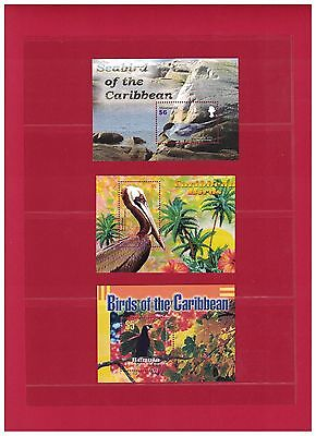 Seabird of the Caribbean - Stamp Sheets