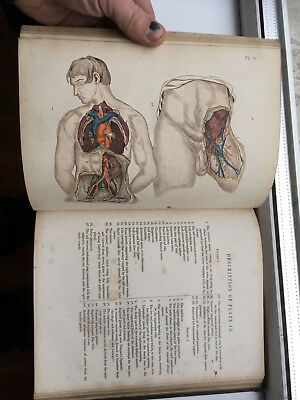 Rare Victorian Medical Book Maclises Surgical Anatomy 1857 with 36 Colour Plates