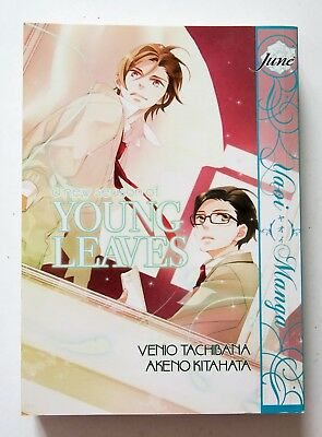 A New Season of Young Leaves NEW Manga Novel Anime Comic Book