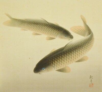 """JAPANESE PAINTING HANGING SCROLL CARP OLD ART 52.6"""" Picture Antique Japan c547"""