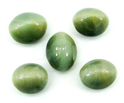 39.00 Ct Natural Cat's Eye Loose Gemstone Lot of 5 Pcs Cabochon Stone - 22866