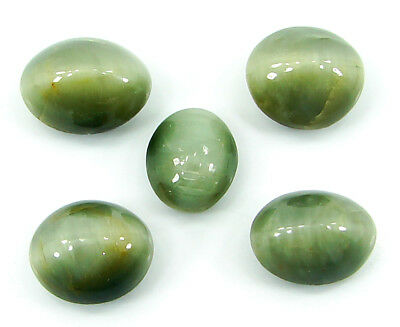 38.70 Ct Natural Cat's Eye Loose Gemstone Lot of 5 Pcs Cabochon Stone - 22867