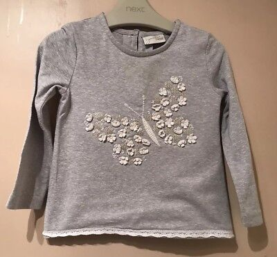 Next Baby Girls Signature Top T Shirt Long Sleeve Floral Butterfly Grey 12-18 M