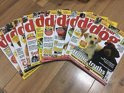 Your Dog magazines - 2017, like new condition, selling as a bundle.
