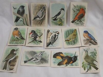 Vintage Arm & Hammer Useful Birds Of America 9Th Series Lot Of 13