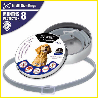 Bayer Seresto Flea and Tick Collar for Small DOG Up to 18lbs 8 Month Protection