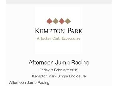 1 X General Admission Ticket Kempton Racecourse Afternoon Jump Racing 08/02/19