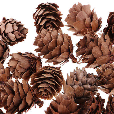 30Pcs Small Natural Pinecones Xmas Tree Decor Crafting Ornament