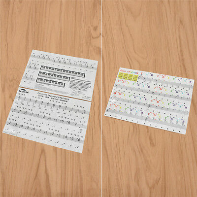 Transparent Removable Piano Keyboard Stickers for Kids Beginners Piano Practice