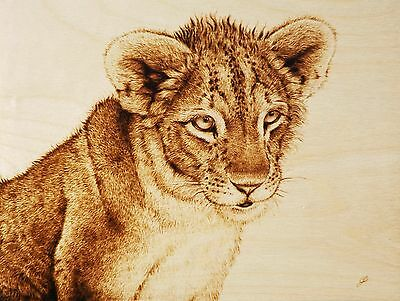 """Lion Cub """"little Miss Curiosity"""" Pyrography/drawing With Fire/woodburning Art"""