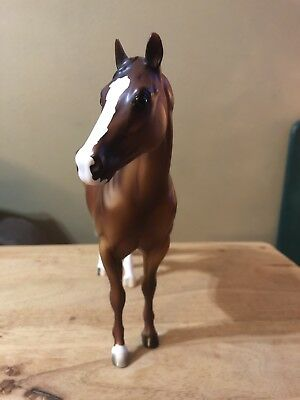 Peter Stone Sorrel Horse Signed By Kara Brown, Miss Rodeo America 2002