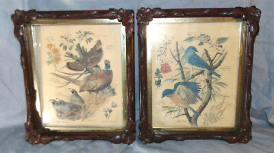 Antique Pair of Victorian Eastlake Deep Well Ornate Frames w/ Singer Bird Prints