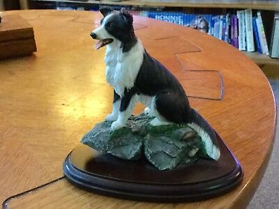 Beautiful TEVIOTDALE Border Collie (on rock base) Mounted Excellent Condition