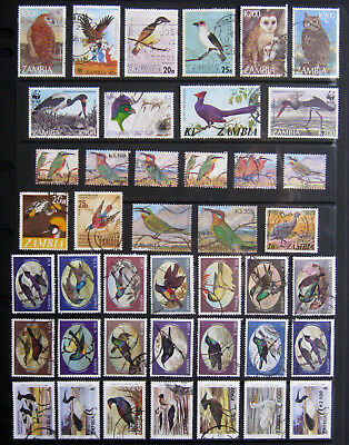 ZAMBIA Birds. Large selection of stamps. Used
