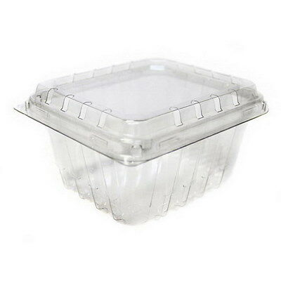 Pactiv PETE Clamshell Food Container Clear 1 lb. | 360/Case