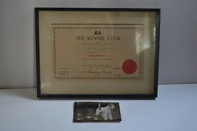 Crufts Wire Fox Terrier Kennel Club Champion certificate 1959 with photograph