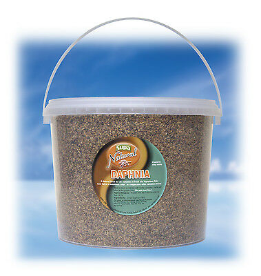 Daphnia For all Varieties of Pond & Aquarium Fish 3000ml 3 litre Bucket