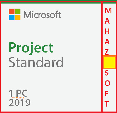 Project Standard 2019 Latest Version + 1 Pc + 32/64 Bits + Esd + Full Product