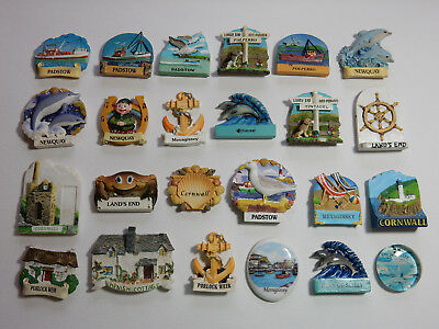 One Selected Mostly 3D Souvenir Fridge Magnet from Cornwall