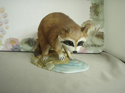 Vintage Andrea by Sadek Raccoon with water 7001 mint condition