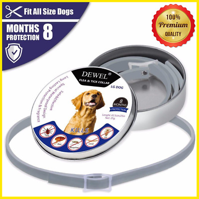 DOGS Flea and Tick Collar for Large Dogs 8 Month Protection US  Bayer DEWEL 63cm
