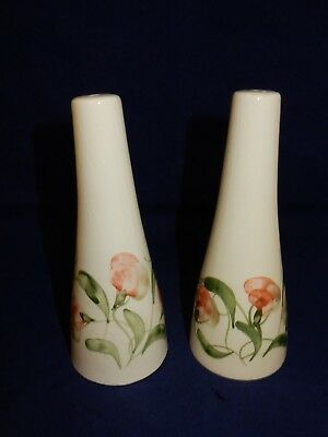 Vintage Cinque Ports Pottery The Monastery Rye Floral Salt & Pepper Pots