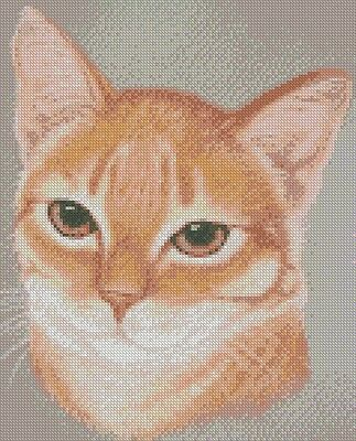 "Ginger Kitten Cat 1 Counted Cross Stitch Kit 12/"" x 10/"" 30.7cm x 25.4cm"