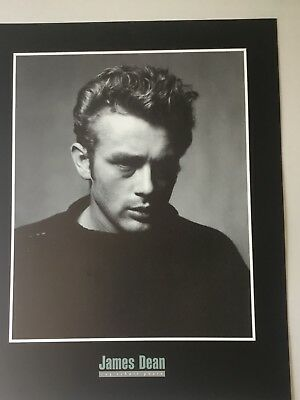 RARE Classic James Dean in NYC by Roy Schatt 36x12 Art print poster
