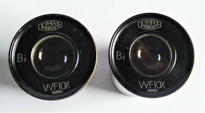 Olympus Microscope Eyepieces, WF10x Bi in excellent Optical condition!