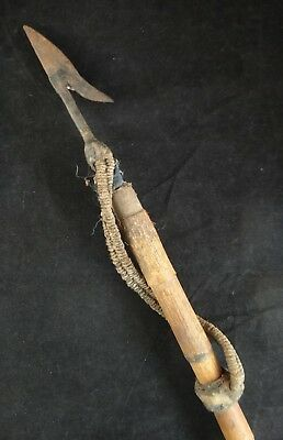 Vintage New Guinea Wild Boar Spear Bamboo shaft- hammered sharp iron spearhead.