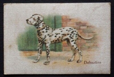 DALMATIAN Best Dogs of their Breed 1913 SILK Quilt Patch Block
