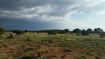 40 Acres of Vacant Land near Seligman and Yampai, Yavapai County, Arizona!