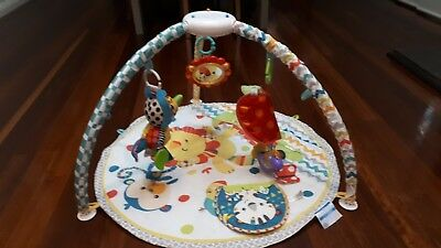 Fisher Price Play Gym 2nd hand
