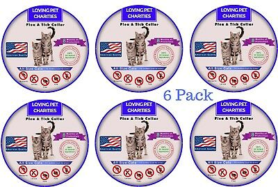 6 Pack Flea And Tick Collar For Cats - 8 Months Protection - One Size Fits All