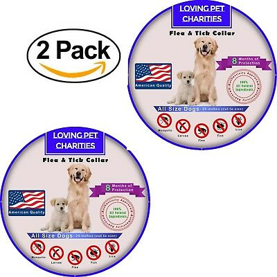 2 Pack Flea And Tick Collar For Dogs - 8 Months Protection - One Size Fits All
