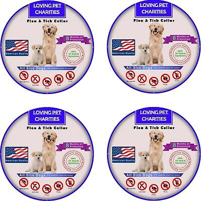 4 Pack Flea And Tick Collar For Dogs - 8 Months Protection - One Size Fits All