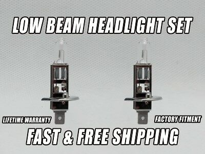 OE Front HID Headlight Bulb For Nissan Maxima 2002-2003 Low Beam Stock Fit x2