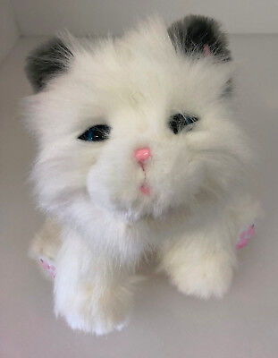 Little Live Pets My Dream Kitten Toy - Pre Owned