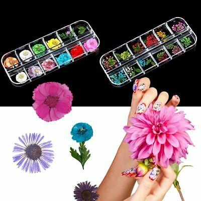 Decor 3D Summer Nail Sticker Mixed Floral Potpourri Slices Real Dry Flower